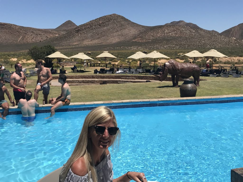 Lunch alongside the swimming pool with two elephants plodding along in the background